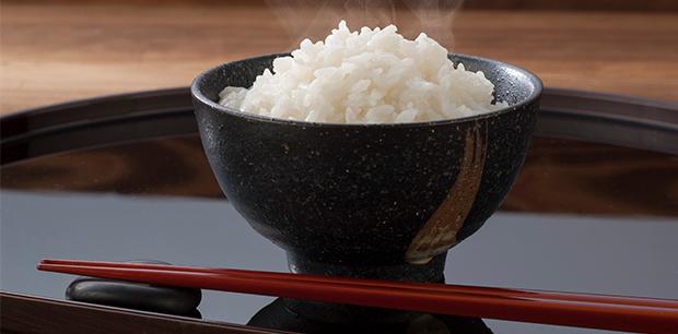 お米の食育
