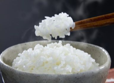 主食米について(一般主食米、炊飯米、無洗米)