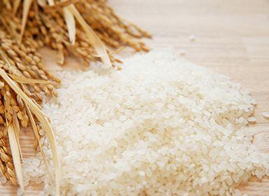 BG無洗米の製作工程をご紹介します。